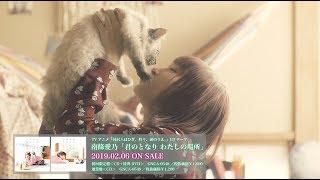 【南條愛乃】ニャーシングル「君のとなり わたしの場所」MV -short ver.-