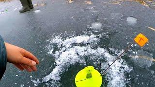 Поставил жерлицы на чистом льду! Окунь на карася! Зимняя рыбалка 2019-2020! Безмотылка!