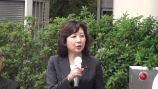 野田聖子自由民主党総務会長なんばパークス前街頭演説