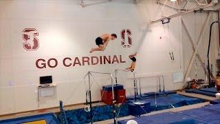 Стэнфордская мужская гимнастика - 2014