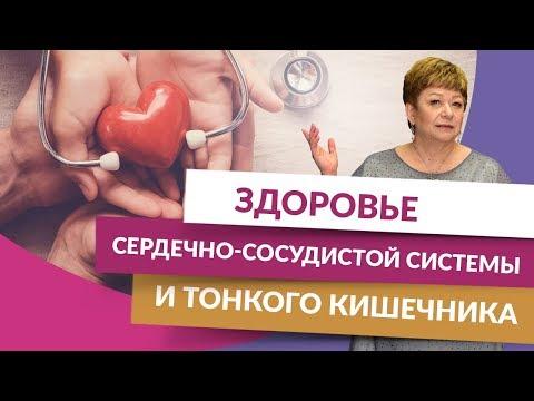 0 Здоровье сердечно-сосудистой системы и тонкого кишечника