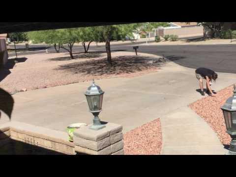 My neighbors revenge of the rocks