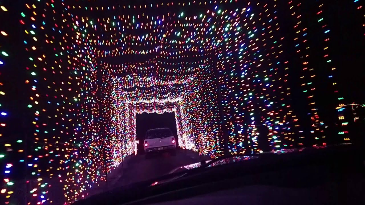 christmas light tunnel at country springs - Country Springs Christmas Lights