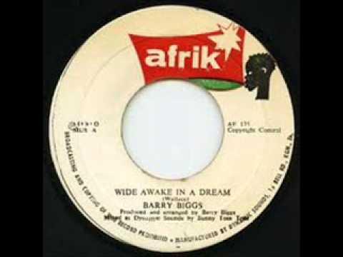 Barry Biggs - 'Wide Awake In A Dream'