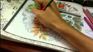 Liam millerite lovatic huỳnh - camouflage (selena gomez cover) colorful ver