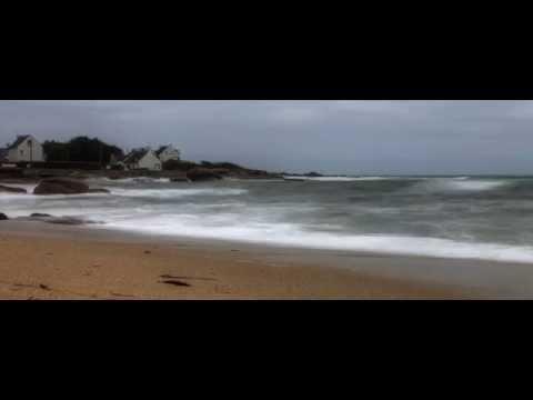 Reynin - Sea Bar