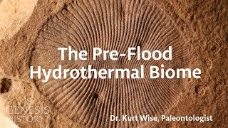 What was the World Like Before the Flood? | The Pre-Flood Hydrothermal Biome