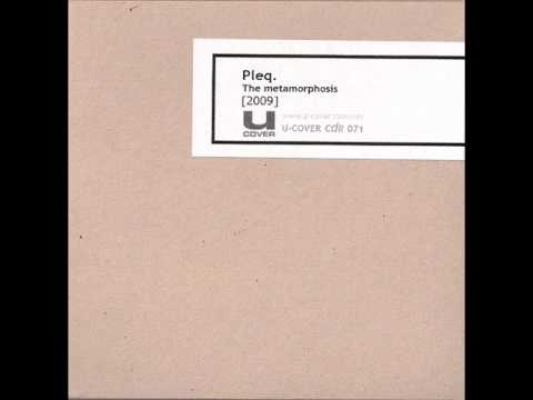 Pleq - I Think In These Terms Every Time