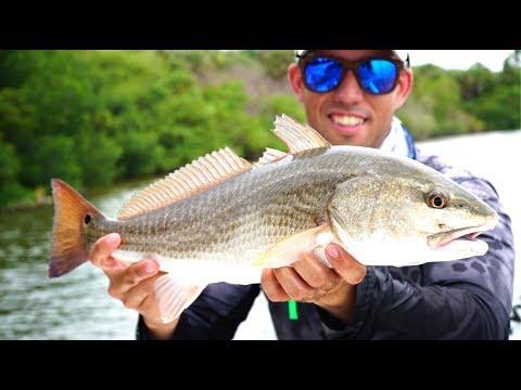 Catching REDFISH -- Inshore SALTWATER FISHING In SW Florida !!!