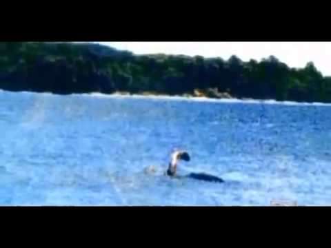 The Plesiosaur like Lake Monster Documentary in english ...  Are Plesiosaurs Still Alive