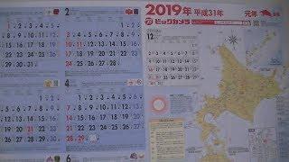 ビックカメラ 2019年(平成31年) カレンダー / biccamera 2019 calendar