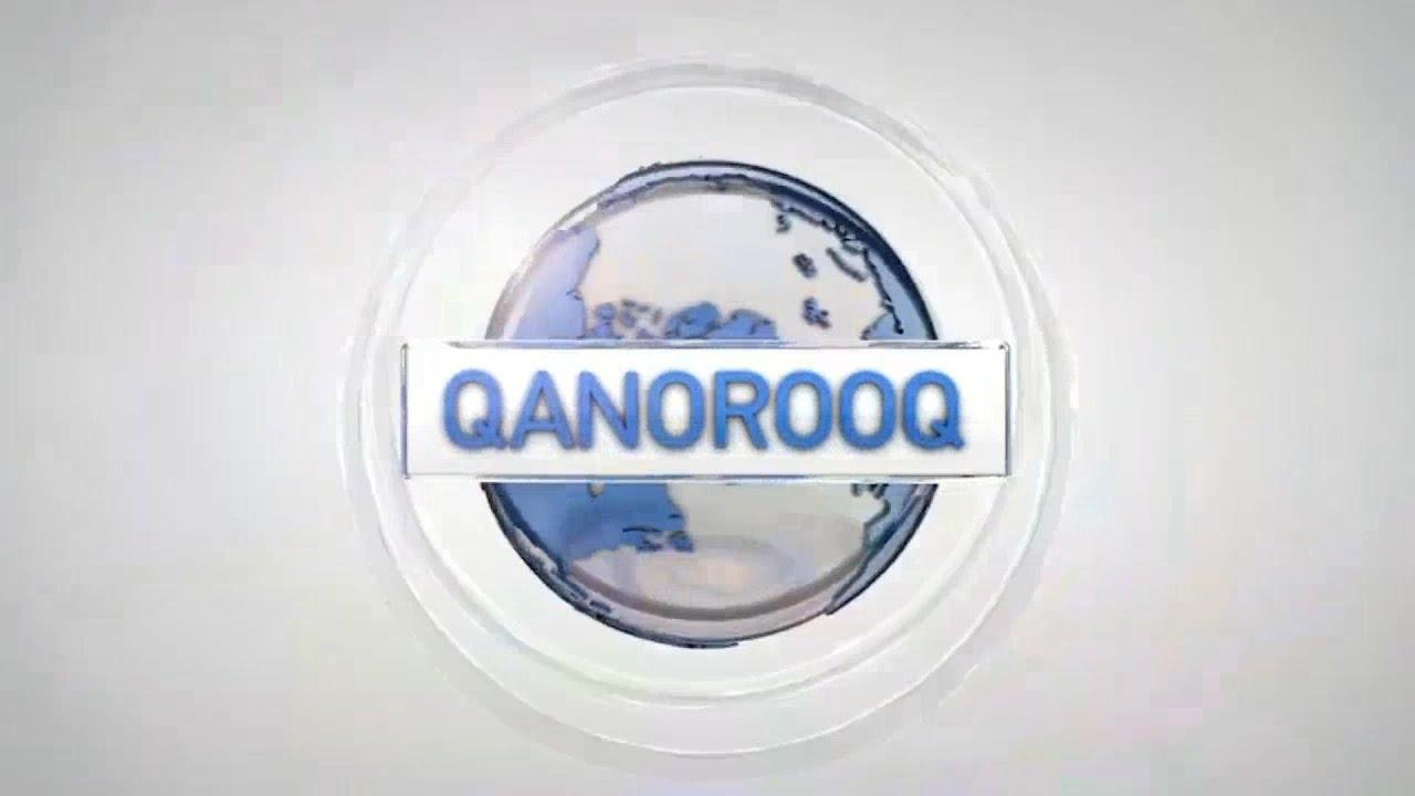 KNR Qanorooq Intro/Outro transparent
