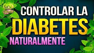 3 Remedios Caseros Para Controlar La Diabetes - Remedios Caseros Para El Diabetes