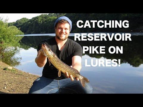 Summer Pike Fishing At Damflask Reservoir! UK Lure Fishing