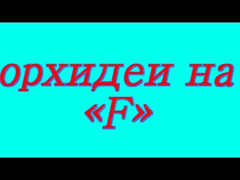 Цветы на букву С - Энциклопедия цветов