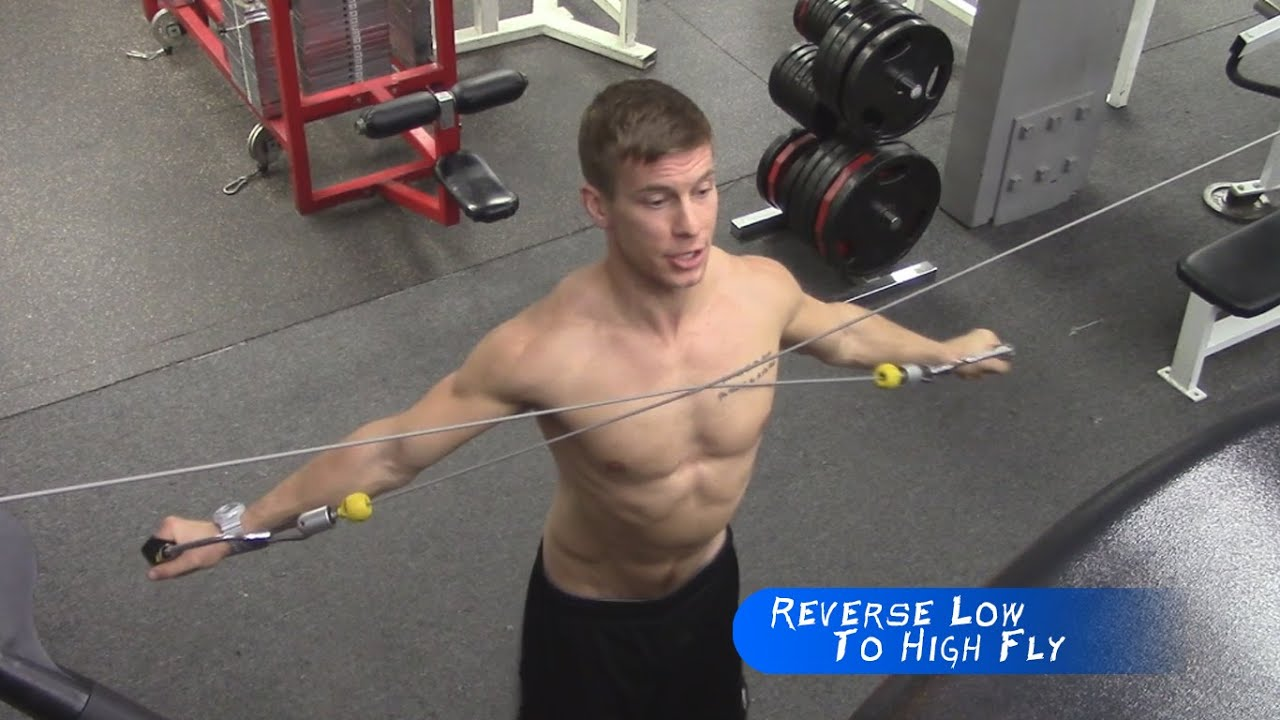 Low Cable Pull : Reverse cable fly low to high ♠ training for pull ups