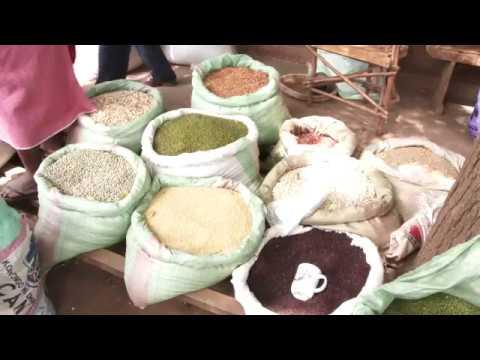 Kenya Cereal Enhancement Programme - KCEP