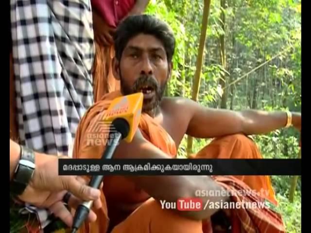 Dr. Gopakumar, Elephant specialist died after elephant attack: ആന ഡോക്ടര് ഗോപകുമാര് അന്തരിച്ചു