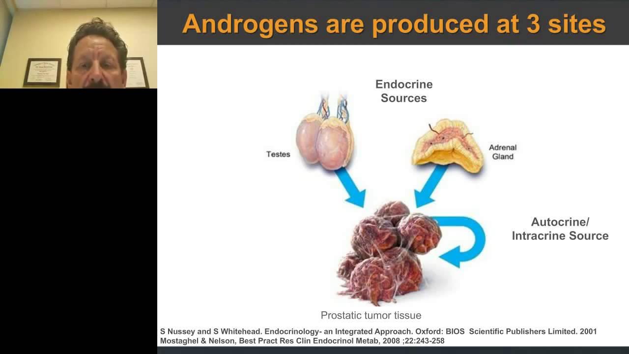 Larry Karsh - How do I choose Androgen Biosynthesis ...