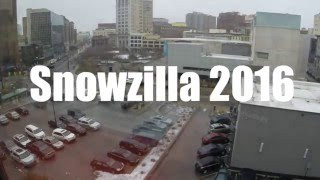 Son of Snowzilla 2016 - Michigan Snow Storm 24 hours in 10 minutes
