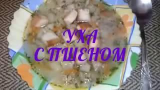 ௹  Уха с пшеном!!! Let's cook ௹