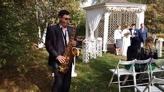 Саксофон на Свадьбу в Барнауле- Святослав Кузнецов +79132134524