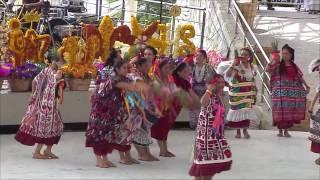 Guelaguetza 2016: San Juan Bautista Tuxtepec. Flor de Piña