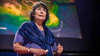 "The ""dead zone"" of the Gulf of Mexico 