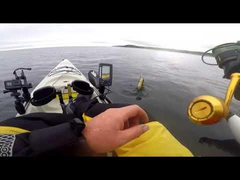 Kayaking Fishing Ireland: Culdaff Co. Donegal