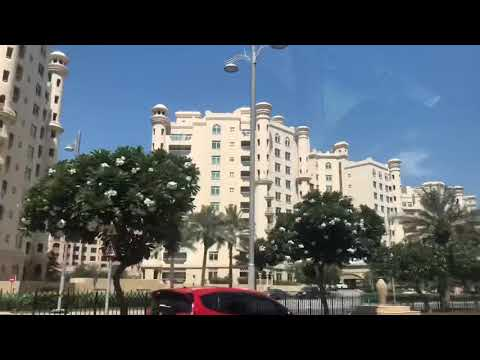 Dubai Aquaventure Waterpark and Dolphin Bay