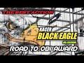 Kacer Black Eagle Mr Gusdoni Menganas Roll Nembak Speed Rapat  Mp3 - Mp4 Download