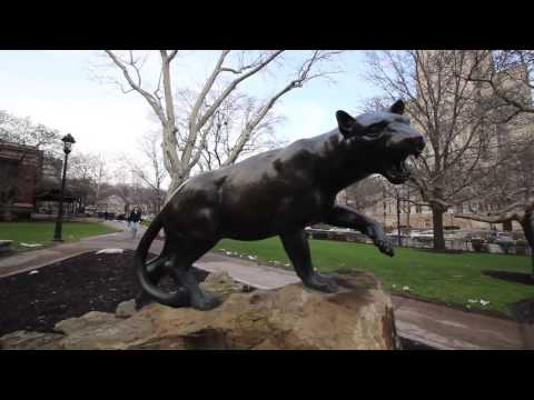 An Ode to the University of Pittsburgh