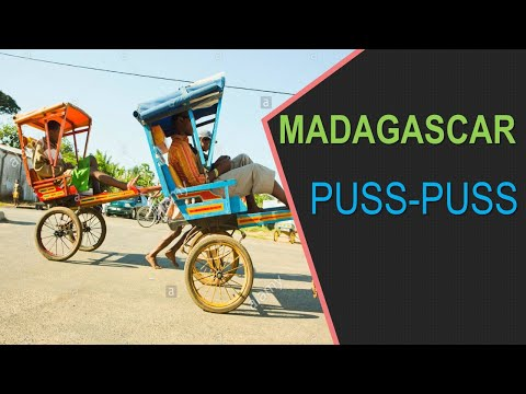 PUSS-PUSS IN MADAGASCAR (Exploring Antsirabe, Madagascar)