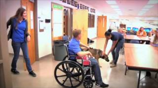 Pawsitive Action Trains Assistance Dogs At Harmony Hs