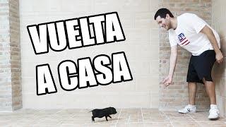 VUELTA A CASA Y BIENVENIDA DE RUPER