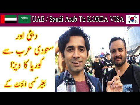 Dubai To Korea Visa | Saudi Arab To Korea Visa | How To Apply