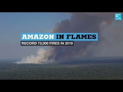 Amazon in flames: Record 73,000 fires in 2019