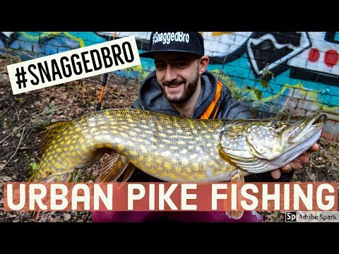 Pike Fishing Canals - Snagged Bro