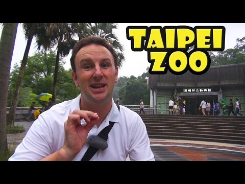 Taipei Zoo Travel Guide