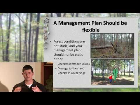 Chapter 1 - Management Plan