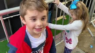 """Hanging With Robert Downey Jr.! My Kids And I Go To The Wild """"Dolittle"""" Premiere! Fun And Review!"""
