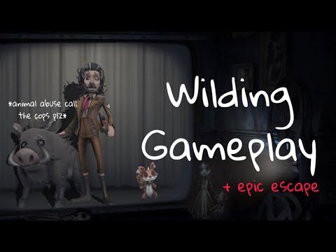 Bullying Hell Ember/ Wilding Gameplay🐗/ Identity V