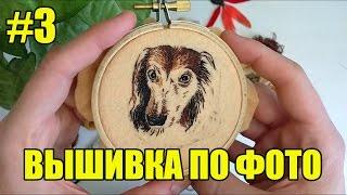 Вышивка портрета собаки по фото. Процесс. Блог о вышивке гладью #3(, 2017-04-24T06:25:42.000Z)