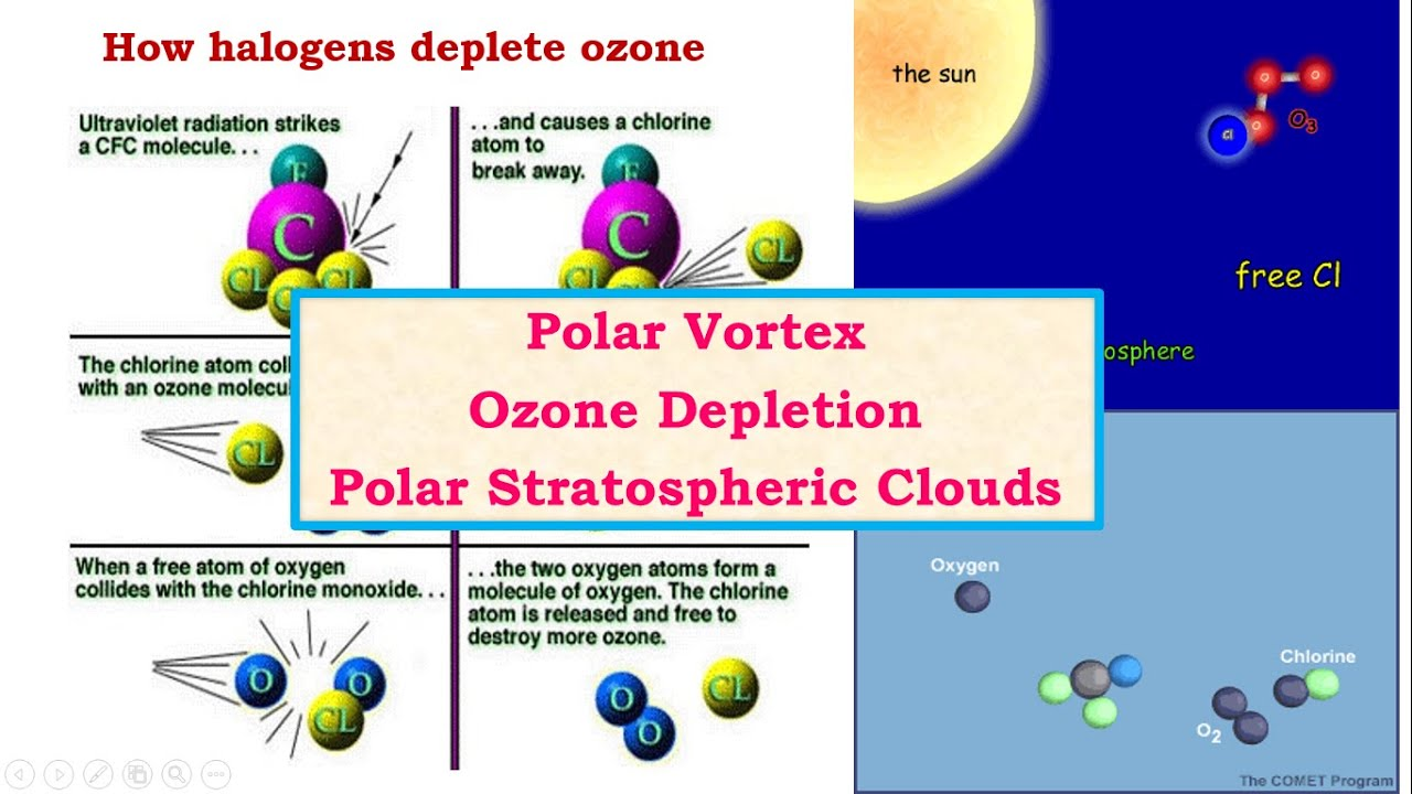 ozone depletion in the arctic essay Free essay: ozone depletion by human's actions the ozone layer is a very important component in the atmosphere this shows the process of ozone destruction in the arctic in this case, the ozone level in the arctic also decreases ozone depletion essay 1476 words.
