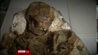 พบฟอสซิลร่างแม่ตระกองกอดลูก อายุ 4,800 ปี - บีบีซีไทย