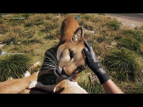 Голяма Котка! - Far Cry 5 #10 thumbnail