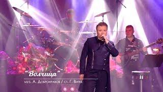 Александр ДОБРОНРАВОВ - ОДИНОКАЯ ВОЛЧИЦА | Юбилейный концерт, Вегас Сити Холл (Live)
