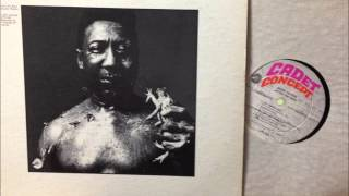 Muddy Waters/Blues and Trouble