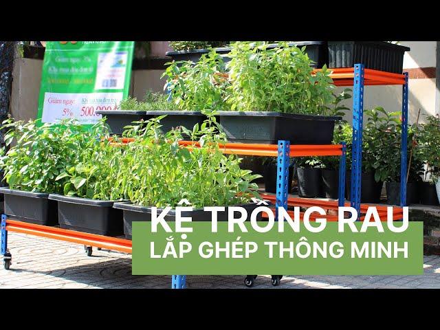 Kệ trồng rau lắp ghép thông minh - Vườn Sài Gòn