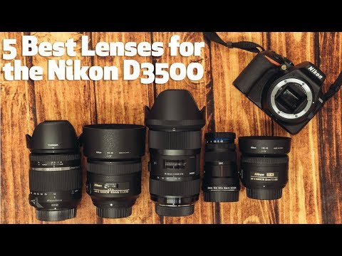5 Best Lenses for the Nikon D3500 under $800 - Focus Camera